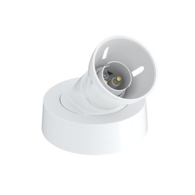 B22-45°-Battern-Lampholder